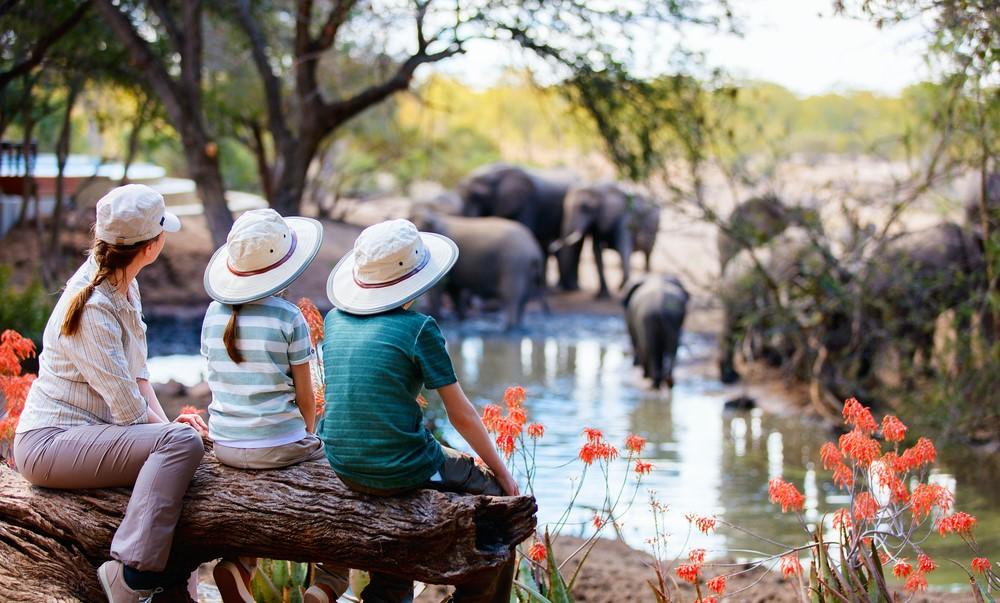 A mais épica aventura da sua vida num safari em África