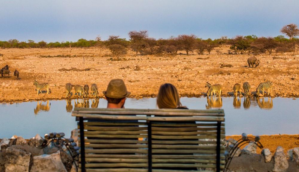 Casal a desfrutar um safari